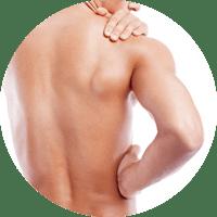 kreis-2-glatte-muskulatur